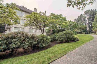 Photo 18: 209 1132 DUFFERIN STREET in Coquitlam: Eagle Ridge CQ Condo for sale : MLS®# R2220236