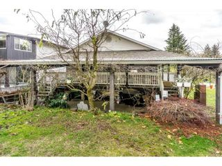 Photo 13: 14124 113A AVENUE in Surrey: Bolivar Heights House for sale (North Surrey)  : MLS®# R2222522