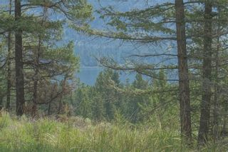 Photo 4: Lot 32 BELLA VISTA BOULEVARD in Fairmont Hot Springs: Vacant Land for sale : MLS®# 2439323
