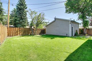 Photo 35: 3940 VINCENT Place NW in Calgary: Varsity Detached for sale : MLS®# A1061054
