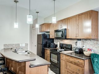 Photo 12: 307 2 HEMLOCK Crescent SW in Calgary: Spruce Cliff Apartment for sale : MLS®# A1076782