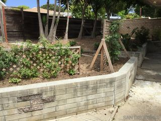 Photo 19: LA JOLLA House for rent : 3 bedrooms : 5425 Waverly Ave
