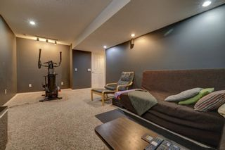 Photo 27: 208 Mt Selkirk Close SE in Calgary: McKenzie Lake Detached for sale : MLS®# A1104608