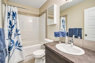 Photo 14: 221 207 Sunset Drive: Cochrane Apartment for sale : MLS®# A1055699