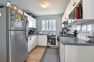 Photo 11: 142 Martindale Boulevard NE in Calgary: Martindale Detached for sale : MLS®# A1111282