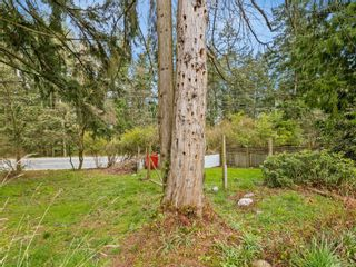 Photo 14: 663 Bowen Rd in : Na University District House for sale (Nanaimo)  : MLS®# 870820