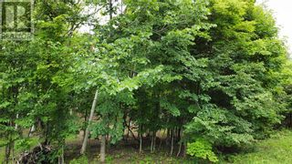 Photo 5: Lot 1 Indian Mountain Lane in Nemi: Vacant Land for sale : MLS®# 2097541
