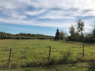Photo 12: Rge Rd 231 North of Twp Rd 564: Rural Sturgeon County Rural Land/Vacant Lot for sale : MLS®# E4262842