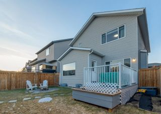 Photo 35: 69 ELGIN MEADOWS Link SE in Calgary: McKenzie Towne Detached for sale : MLS®# A1098607
