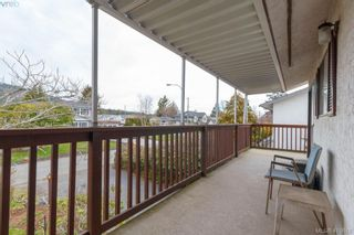 Photo 32: 4389 Columbia Dr in VICTORIA: SE Gordon Head House for sale (Saanich East)  : MLS®# 813897