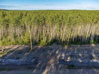 Photo 2: Rge Rd 423 Twp 623: Rural Bonnyville M.D. Rural Land/Vacant Lot for sale : MLS®# E4252823