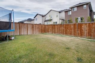 Photo 32: 249 Skyview Shores Manor NE in Calgary: Skyview Ranch Detached for sale : MLS®# A1040770