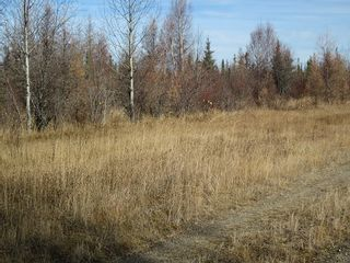 Photo 23: NW 24-54 RR 131: Niton Junction Rural Land for sale (Edson)  : MLS®# 32590