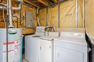 Photo 39: 22 13403 CUMBERLAND Road in Edmonton: Zone 27 House Half Duplex for sale : MLS®# E4248580