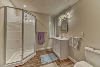 Photo 22: 19 Falshire Close NE in Calgary: Falconridge Detached for sale : MLS®# A1121159