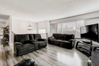Photo 6: 4587 240 Street in Langley: Salmon River House for sale : MLS®# R2553886