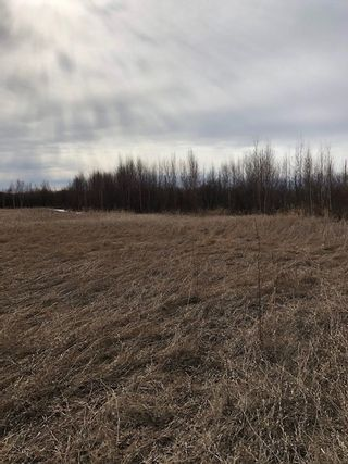 Photo 3: 79.84 AC RR225 north of Twp 572: Rural Sturgeon County Rural Land/Vacant Lot for sale : MLS®# E4238538