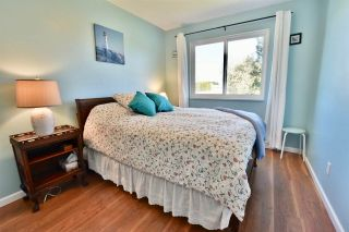 Photo 11: 4612 60B STREET in Ladner: Holly House for sale : MLS®# R2353581