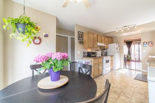 Photo 5: 49 Templeson Crescent NE in Calgary: Temple Detached for sale : MLS®# A1089563