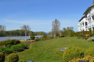 Photo 4: 302 6263 RIVER ROAD in Delta: East Delta Condo for sale (Ladner)  : MLS®# R2261893