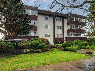 Main Photo: 204 1019 McClure St in : Vi Downtown Condo for sale (Victoria)  : MLS®# 870498