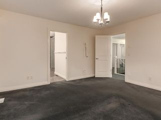 Photo 28: 250 MAHOGANY Place SE in Calgary: Mahogany Detached for sale : MLS®# A1069286