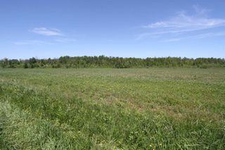 Photo 2: Lt 17 Centennial Park Road in Kawartha Lakes: Rural Eldon Property for sale : MLS®# X4795681