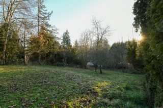 Photo 4: 4659 McQuillan Rd in : CV Courtenay East Land for sale (Comox Valley)  : MLS®# 863260