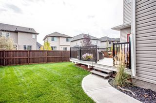Photo 50: 187 Cranford Green SE in Calgary: Cranston Detached for sale : MLS®# A1092589