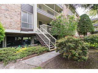 "Photo 17: 108 10631 NO 3 Road in Richmond: Broadmoor Condo for sale in ""Admirals Walk"" : MLS®# R2164437"
