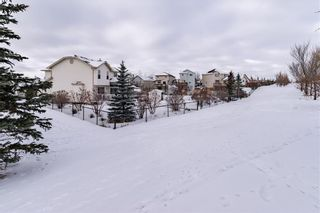 Photo 17: 278 COVENTRY Court NE in Calgary: Coventry Hills Detached for sale : MLS®# C4219338