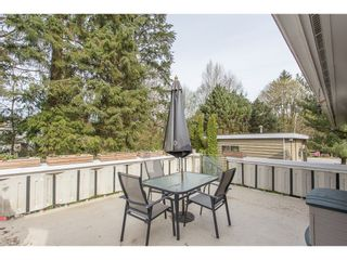Photo 39: 12387 MOODY Street in Maple Ridge: West Central House for sale : MLS®# R2258400