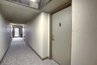 Photo 26: 504 1215 Cameron Avenue SW in Calgary: Lower Mount Royal Apartment for sale : MLS®# A1062739