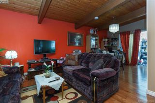Photo 4: 4211 Belvedere Rd in VICTORIA: SE Lake Hill House for sale (Saanich East)  : MLS®# 769195