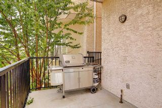 Photo 35: 25 8403 164 Avenue in Edmonton: Zone 28 Townhouse for sale : MLS®# E4253838