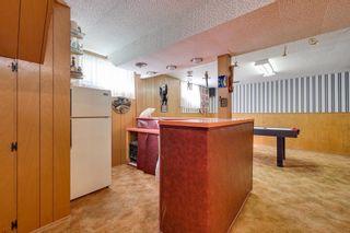 Photo 17: 3617 113 Avenue in Edmonton: Zone 23 House for sale : MLS®# E4261737