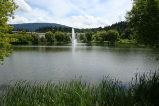 Photo 3: 941 Northeast 8 Avenue in Salmon Arm: DOWNTOWN Vacant Land for sale (NE Salmon Arm)  : MLS®# 10217178