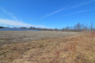 Photo 15: Vl Shelter Valley Road in Cramahe: Rural Cramahe Property for sale : MLS®# X5206281