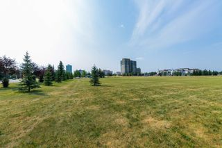 Photo 44: 2422 106A Street in Edmonton: Zone 16 House for sale : MLS®# E4254507