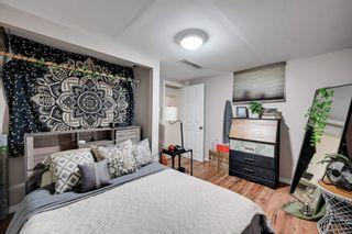 Photo 24: 7944 76 Avenue in Edmonton: Zone 17 House for sale : MLS®# E4255498