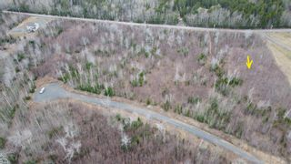 Photo 6: Lot 7 Powell Road in Little Harbour: 108-Rural Pictou County Vacant Land for sale (Northern Region)  : MLS®# 202109707