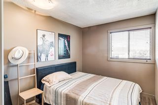 Photo 26: 274 Fresno Place NE in Calgary: Monterey Park Detached for sale : MLS®# A1149378