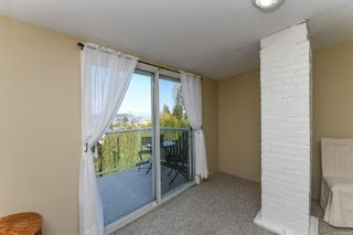 Photo 42: 3882 Royston Rd in : CV Courtenay South House for sale (Comox Valley)  : MLS®# 871402