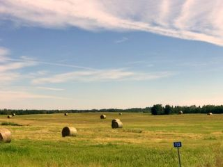 Photo 2: 490 50450 Range Road 234: Rural Leduc County Rural Land/Vacant Lot for sale : MLS®# E4208603
