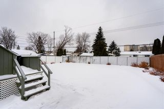 Photo 24: 238 Thompson Drive in Winnipeg: Jameswood Residential for sale (5F)  : MLS®# 202102267