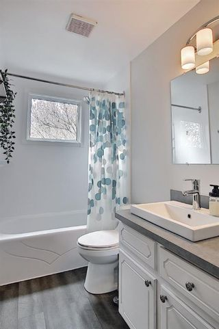 Photo 15: 80 Erin Grove Close SE in Calgary: Erin Woods Detached for sale : MLS®# A1107308