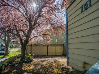 Photo 5: 101 Ontario St in : Vi James Bay Multi Family for sale (Victoria)  : MLS®# 870902