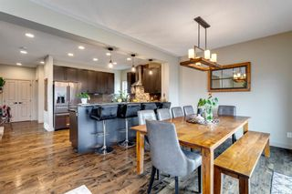 Photo 13: 92 COPPERPOND Mews SE in Calgary: Copperfield Detached for sale : MLS®# A1084015