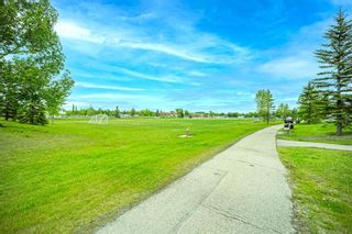 Photo 32: 212 3212 Valleyview Park SE in Calgary: Dover Apartment for sale : MLS®# A1116209