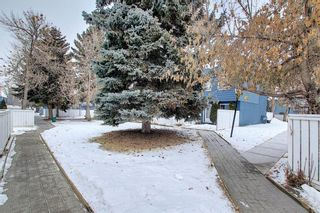 Photo 22: 18 251 90 Avenue SE in Calgary: Acadia Row/Townhouse for sale : MLS®# A1064655